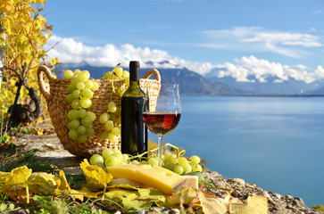 3 Countries wine tour in Switzerland